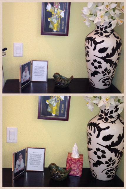 Kleenex-Living-Room