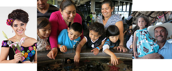 Monterey Bay Aquarium Celebrates Día del Niño
