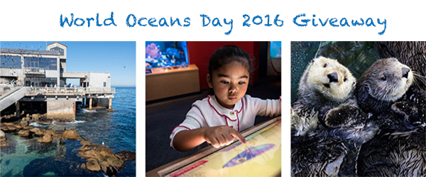 World Oceans Day at the Monterey Bay Aquarium & Giveaway