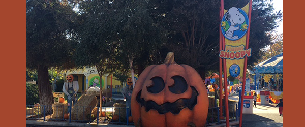 Great America Presents The Great Pumpkin Fest